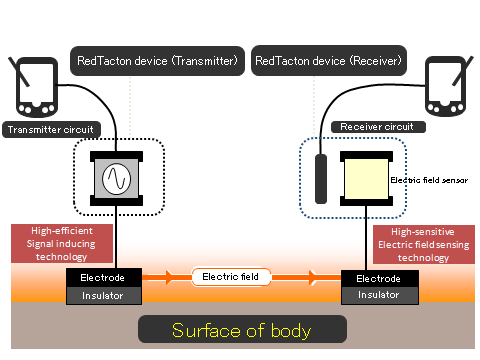How RedTacton Works