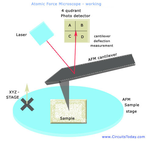 Atomic Force Microscope - Working